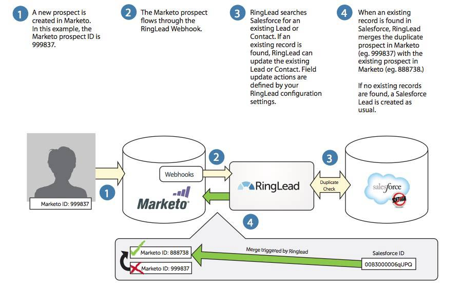 How to Link Marketo Leads to Salesforce Accounts