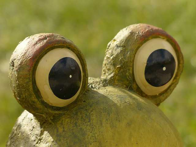 eye opening - statue of frog