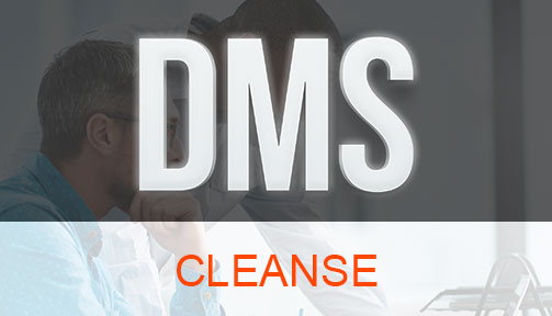 DMS Cleanse