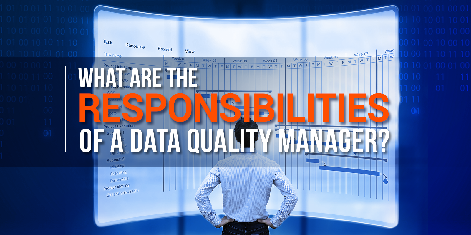What Are The Responsibilities Of A Data Quality Manager?