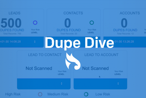 How to install and use Dupe Dive