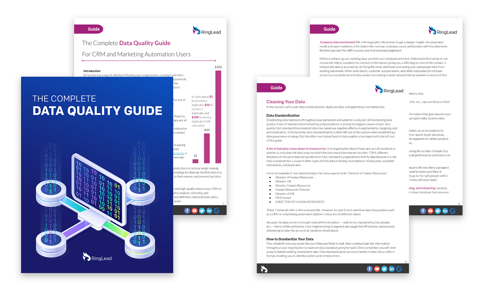 The Complete Data Quality Guide